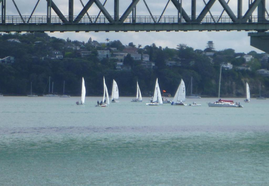 Preview - New Zealand Match Racing Championships - November 2013 © RNZYS Media