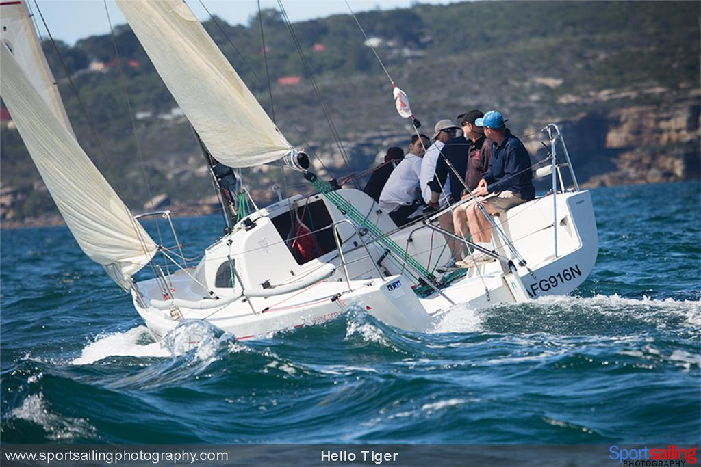 Hello Tiger - 2014 HH Sydney Harbour Regatta © Beth Morley - Sport Sailing Photography http://www.sportsailingphotography.com