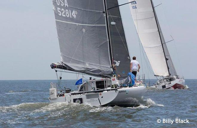 2014 The Atlantic Cup presented by 11th Hour Racing © Billy Black http://www.BillyBlack.com