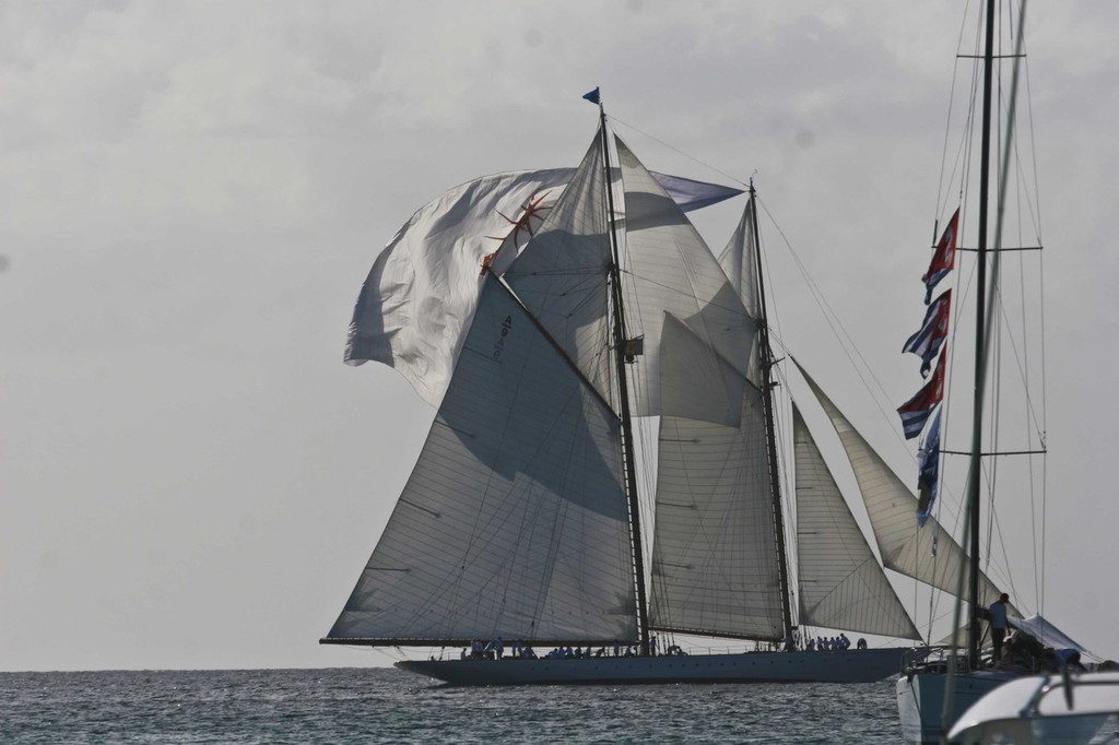 Foredeck crew show show on Elena - Mount Gay Rum Round Barbados Race © Barbados Advocate
