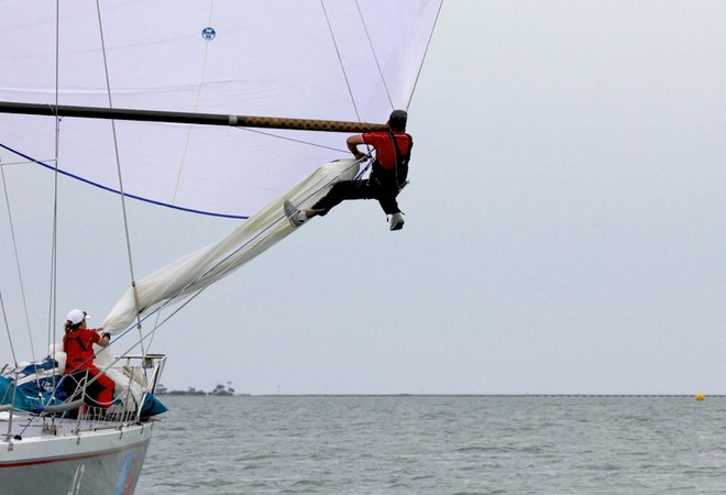 Wild Rose's bowman goes out to fix an issue with the beak. - Festival of Sails ©  John Curnow