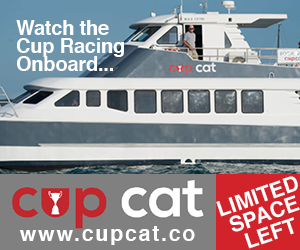 Cup Cat AmCup Ads_300x250px 1