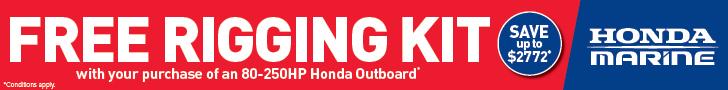 Honda Free Rigging 770x90