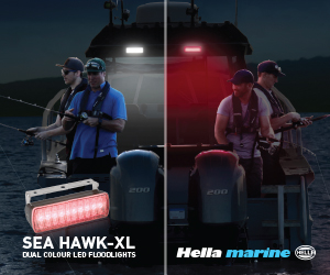 Hella Dual Colour Floodlights - 300x250px - 1 jpg