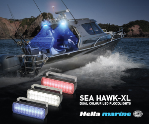 Hella Dual Colour Floodlights - 300x250px - 4 jpg