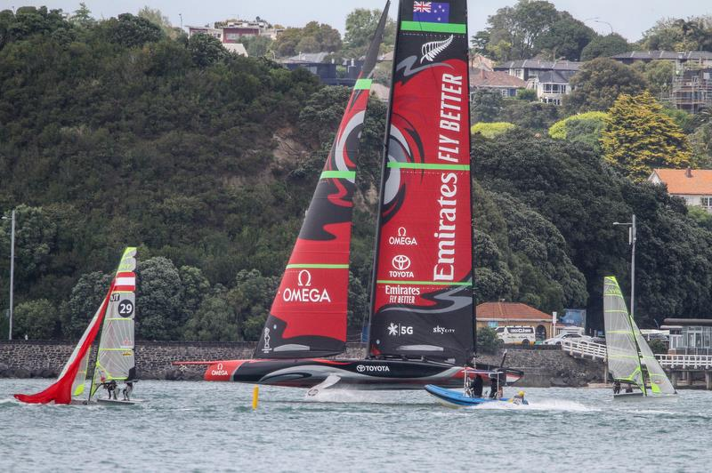 Americas Cup cover image