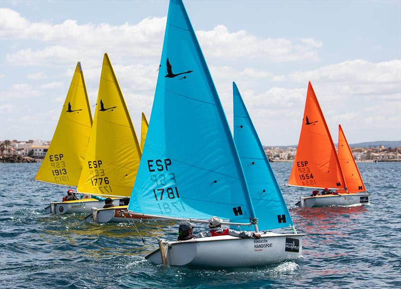 Hansa 303 Double-handle fleet - 16th Sail Racing PalmaVela - Final Day  - photo © Nico Martinez