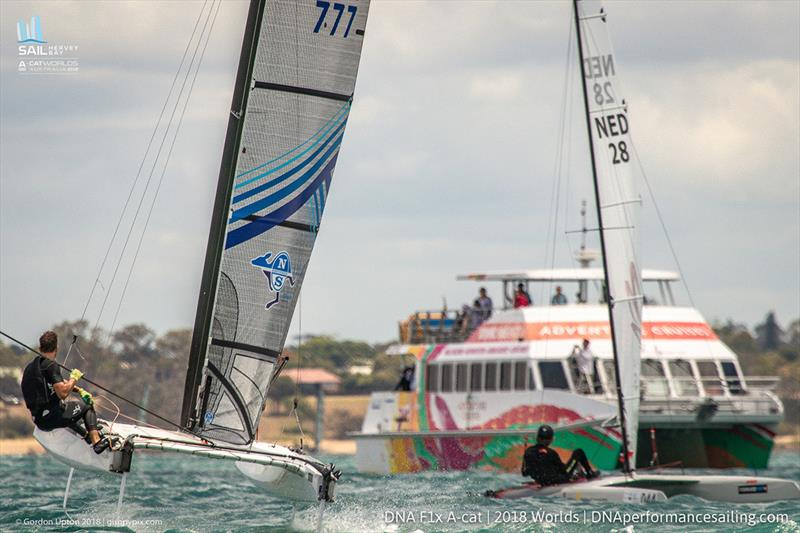 A Cat World Championship 2018 - Day 1 - photo © Gordon Upton / <a target=