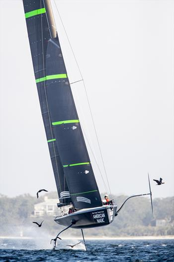 America's Cup: Terry Hutchinson on American Magic - Part 2