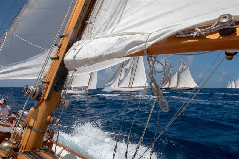 New sponsors, courses, classes and old traditions for 2019 Antigua Classic Yacht Regatta