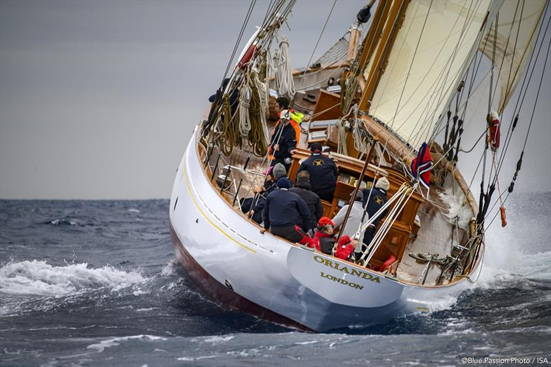Smallest schooner at Capri Classica, Orianda came home third again today photo copyright Blue Passion Photo / ISA taken at Yacht Club Capri and featuring the Classic Yachts class