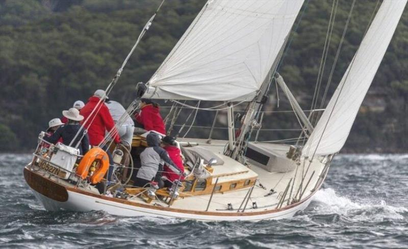 Caprice of Huon: First in Division One - Great Veterans Race 2021 - photo © Andrea Francolini