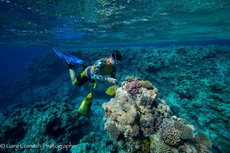 New protections for Australia's world class marine parks