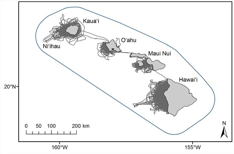 Map of main Hawaiian Islands, showing extent of small-boat survey effort by Cascadia Research Collective (gray lines, largely on leeward sides of the islands) relative to larger range of main Hawaiian Island false killer whale population (blue line) - photo © NOAA Fisheries / Adam Ü