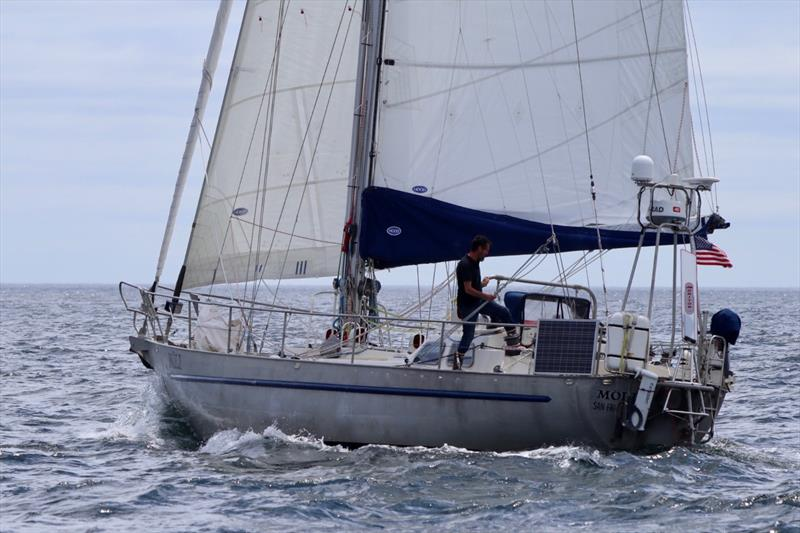 Moli under full sail - photo © Image courtesy of Randall Reeves