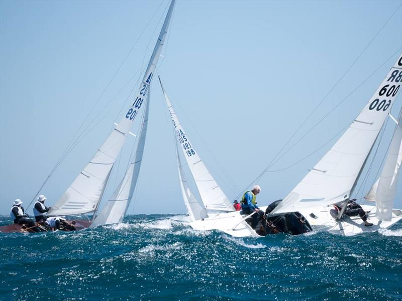 Upwind cross tacking - Australasian Dragon Championship for the Prince Philip Cup, Day 3 - photo © Tom Hodge Media