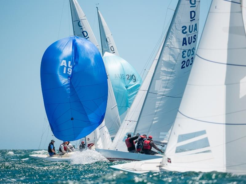 Day 2 - 2019 Dragon World Championship at Fremantle - photo © Tom Hodge Media