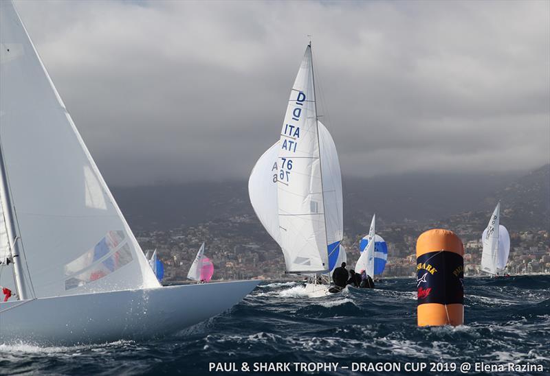 Day 3 - Paul & Shark Trophy, Dragon Cup 2019 - photo © Elena Razina