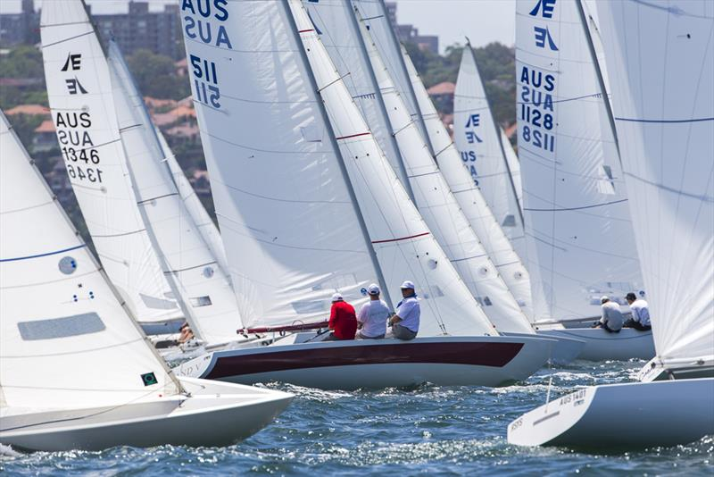 Etchells on Sydney Harbour - Etchells NSW Championship - photo © Andrea Francolini