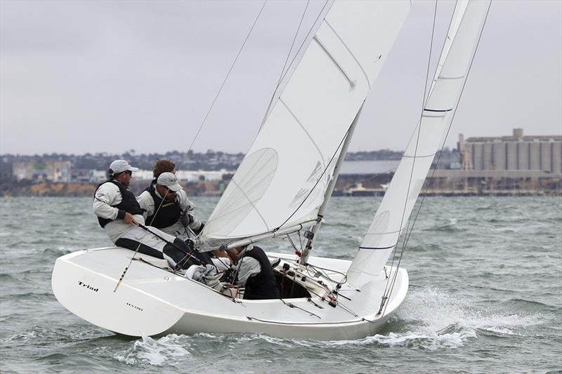 Triad, skippered by Kirwan Robb, won the Corinthian division as a mark of being all-amateur. They finished fourth overall. - photo © Alex McKinnon Photography