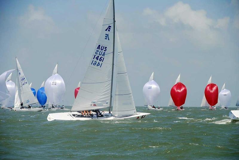 Etchells World Champions Havoc (sail no. 1461) - photo © CCYC