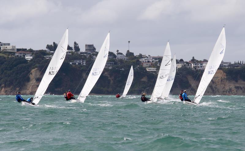 2019 Flying Fifteen New Zealand National Championships photo copyright Chris Fields taken at Royal Akarana Yacht Club and featuring the Flying Fifteen class