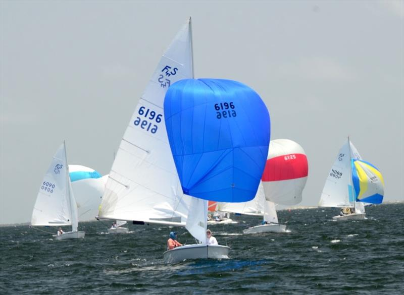 Flying Scot North American Chanpionship at Pensacola Yacht Club on Pensacola Bay. Day 1, the qualifying series. - photo © Talbot Wilson