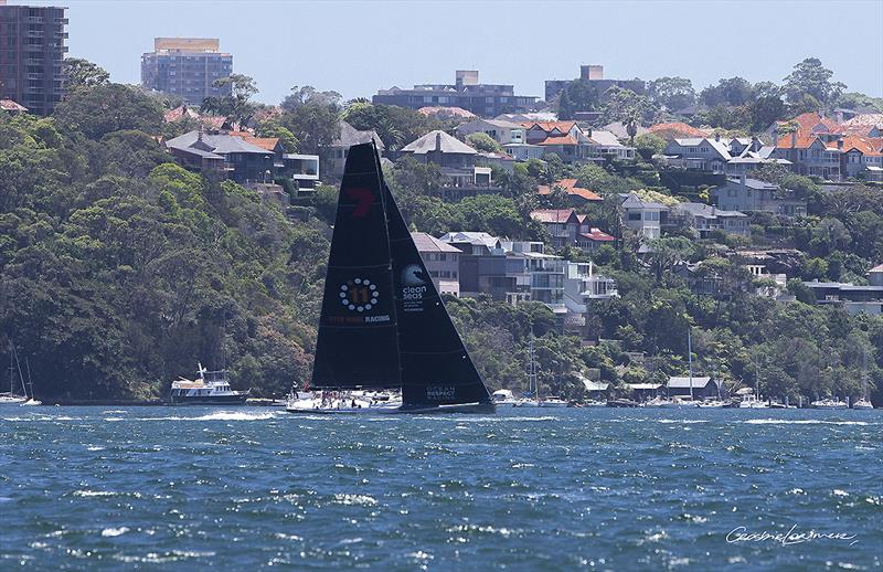 Wild Oats X (Stacey Jackson's Ocean Respect Racing) heading down the Harbour on a training run... - photo © Crosbie Lorimer