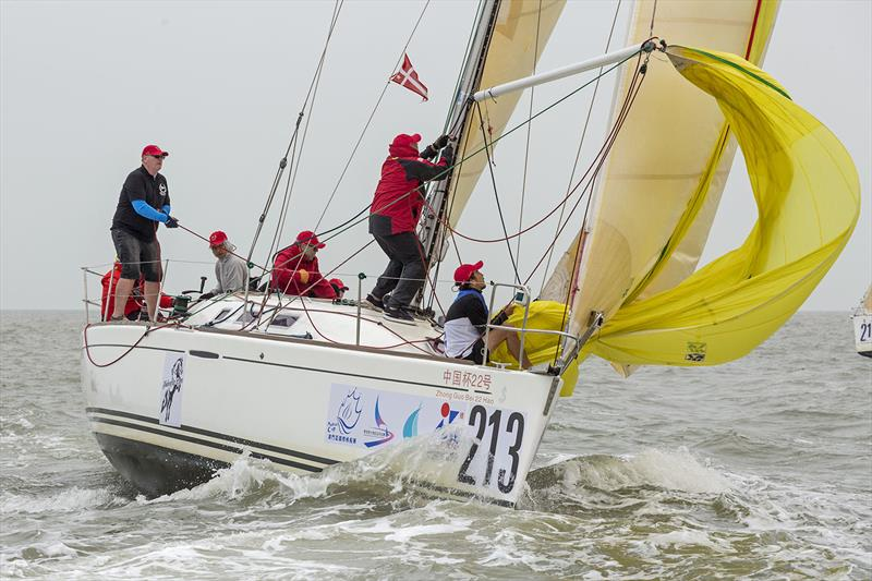 Macau Cup and Greater Bay Cup 2019. Shadowfax.  - photo © Guy Nowell
