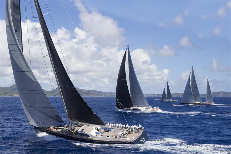Magnificent fleet at the Superyacht Challenge Antigua - 2019 Superyacht Challenge Antigua - photo © Claire Matches / www.clairematches.com