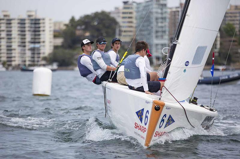 Finn Tapper and his CYCA team in action - National Sailing League - photo © CYCA Media - Hamish Hardy