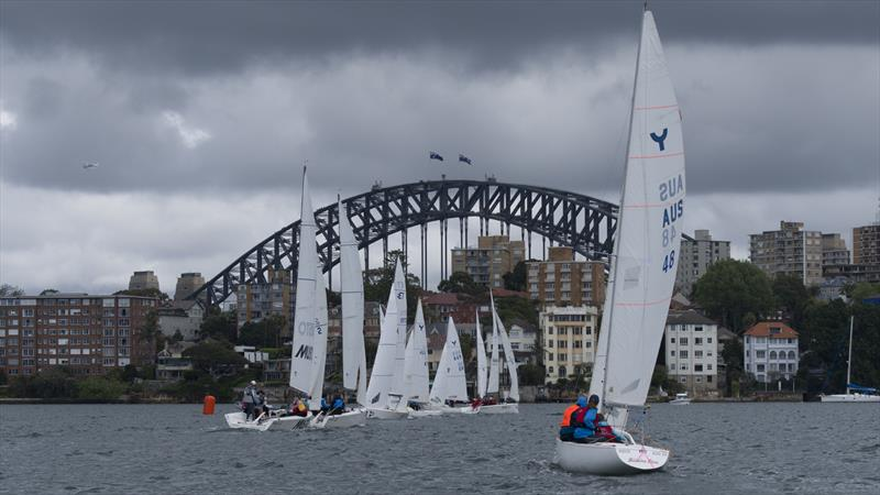 Training for starts on Day One. Day Two saw the sun come out for the Harbour City. - photo © Marg Fraser-Martin