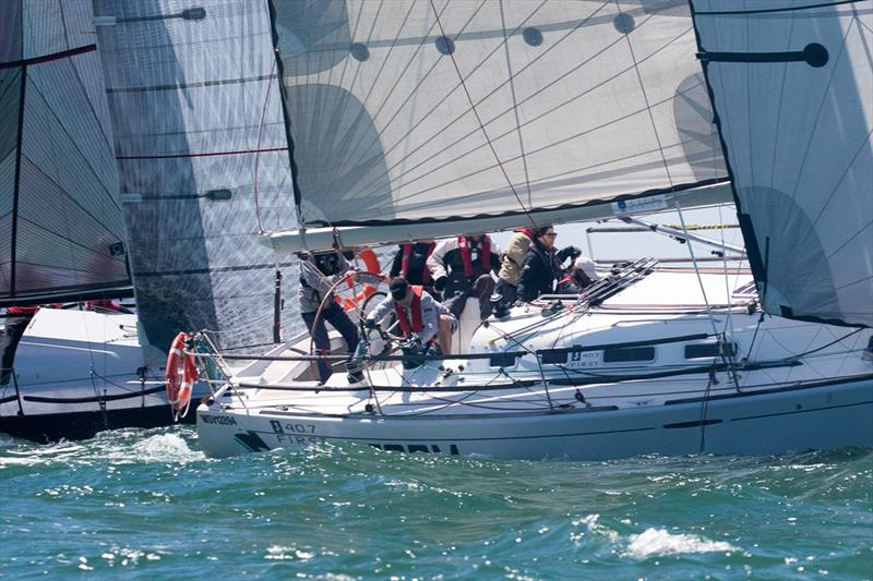 Storm R1318 competing in Div B last year - Lipton Cup Regatta - photo © Harry Fisher