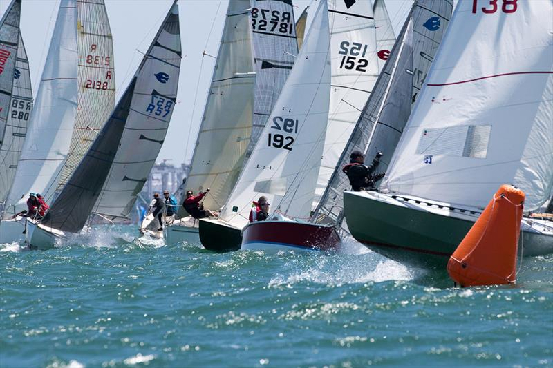 The Div C and D start line at last year's Lipton Cup - photo © Harry Fisher