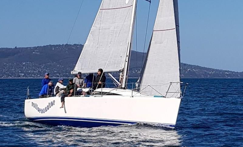 John Taylor's Sydney 32 Rollercoaster will be one of the competitors in the Lipton Cup - photo © Harry Fisher