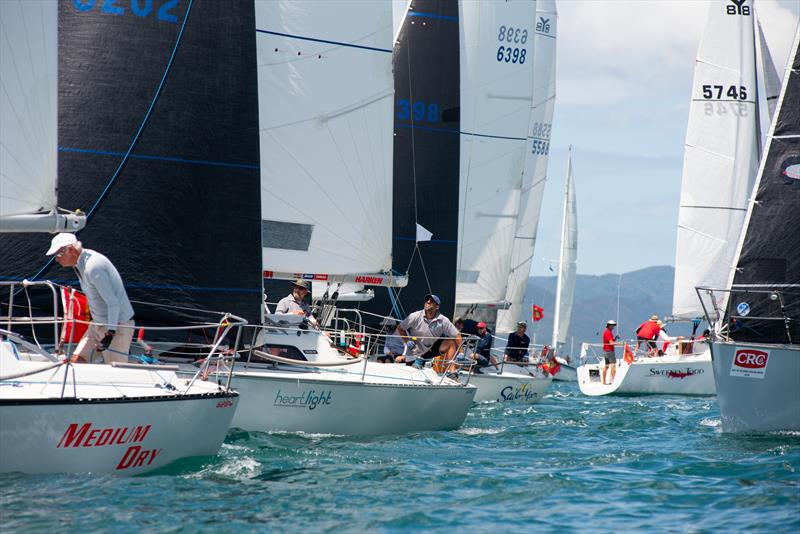 Young 88 - CRC Bay of Islands Race Week - Day 3 - January 2020 - Bay of Islands Yacht Club - photo © Lissa Reyden