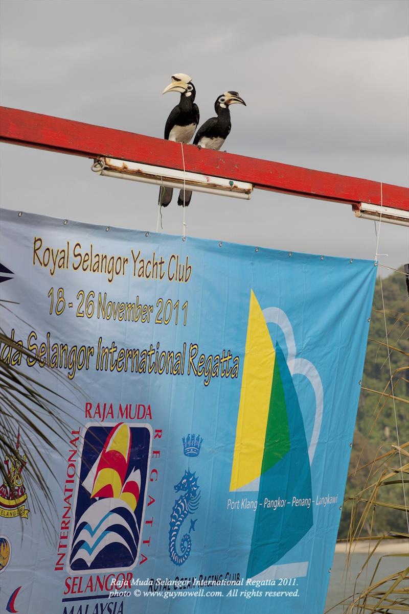 Raja Muda Selangor International Regatta - photo © Guy Nowell