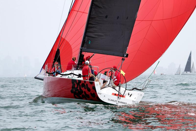 Scarlet Runner the J/111 that will remain the inshore weapon of choice to sail on Melbourne's Port Phillip. - photo © A J McKinnon Photography