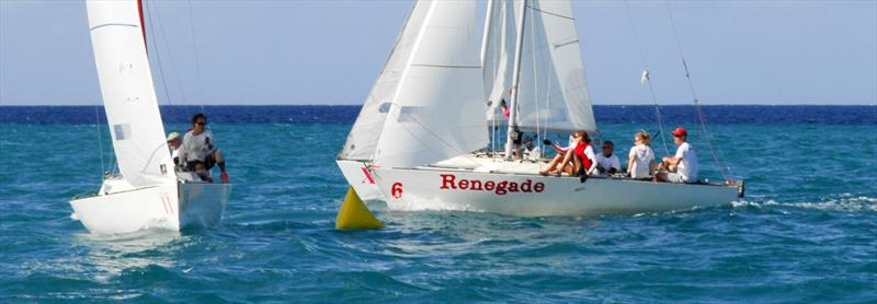 Jamin Jamaica J/22 Regatta - photo © Jamin Jamaica J / 22 Regatta