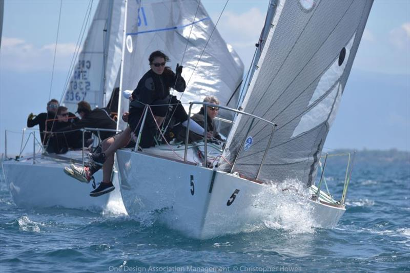 Day 3 - J/24 European Championship at Patras, Greece - photo © Christopher Howell