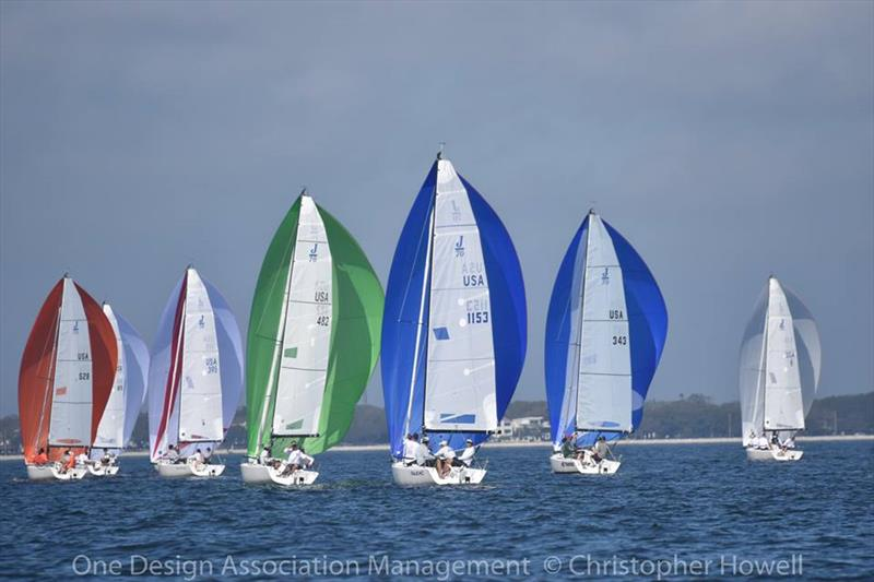 Quantum J70 Winter Series Round 3 at Davis Island Yacht Club - photo © Christopher Howell