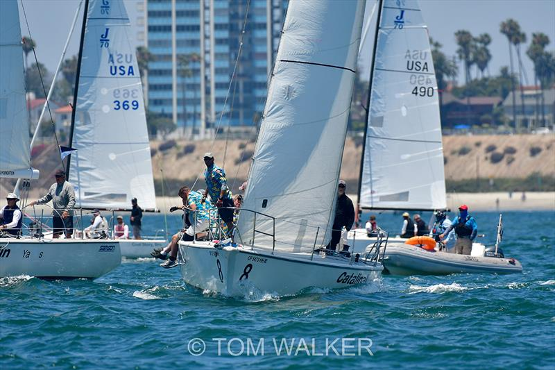 2018 Ullman Sails Long Beach Race Week - Day 3 photo copyright Tom Walker taken at Long Beach Yacht Club and featuring the J70 class