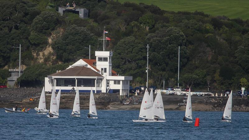 Laser racing - Tamaki Yacht Club -  Waitemata Harbour - June 2020 - photo © Richard Gladwell / Sail-World.com