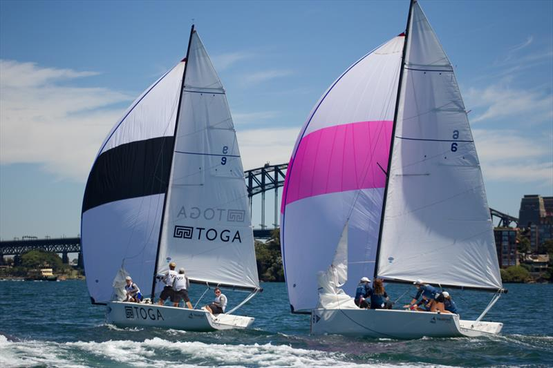 Close racing in the Elliott 7s on stunning Sydney Harbour - Hardy Cup - photo © Darcie Collington Photography