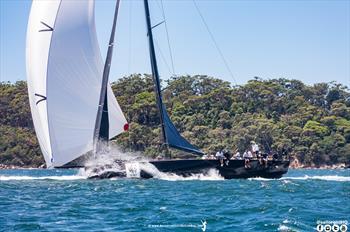 Adventures Weekly: Rolex Sydney Hobart Tribute © Nic Douglass /www.AdventuresofaSailorGirl.com