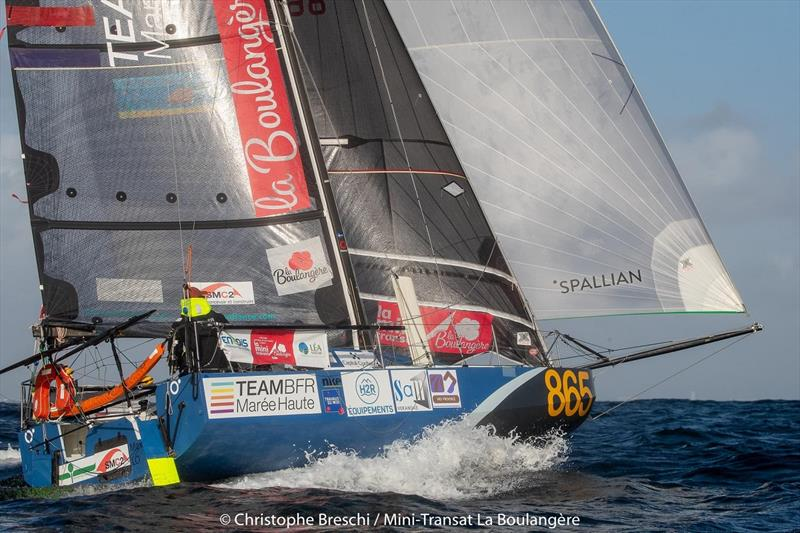 2019 Mini-Transat La Boulangère - photo © Christophe Breschi