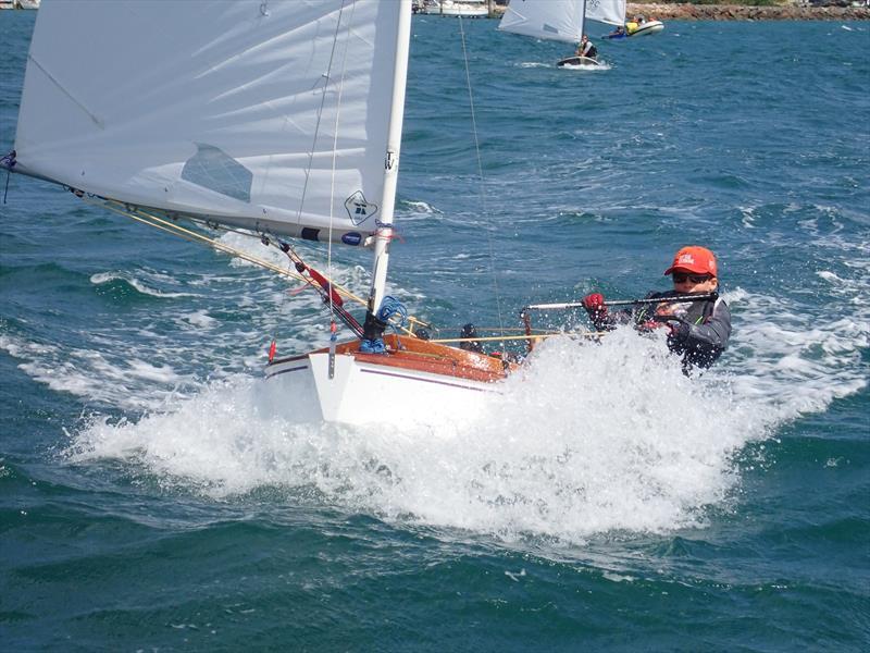 Sean Kensington - winner of the 2019 Tauranga Cup for P class - Evans Yacht & Motor Boat Club - photo © Kohimaramara YC