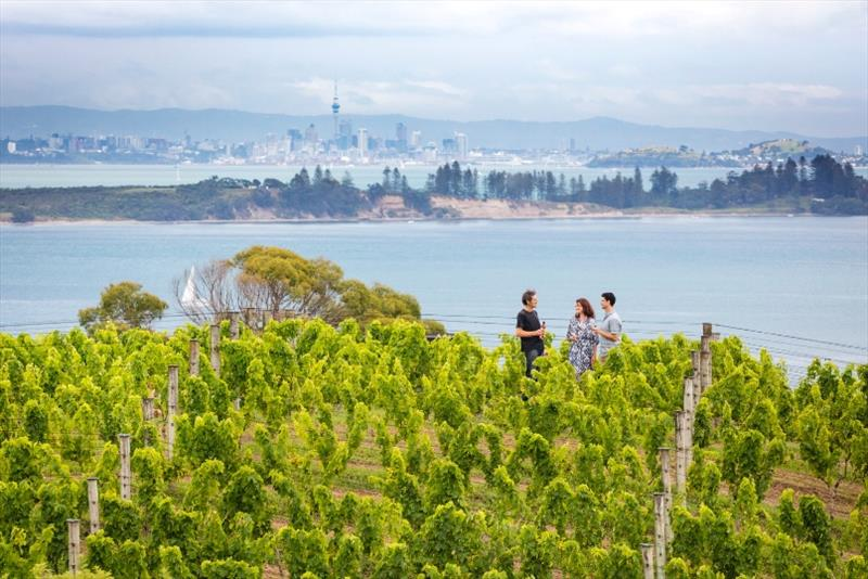 Auckland City as seen from a vineyard on Waiheke Island photo copyright Tourism New Zealand / Miles Holden taken at