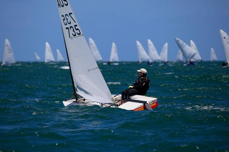 Mark Jackson on Port Phillip - Australian OK Dinghy Nationals - photo © Alex McKinnon Photography
