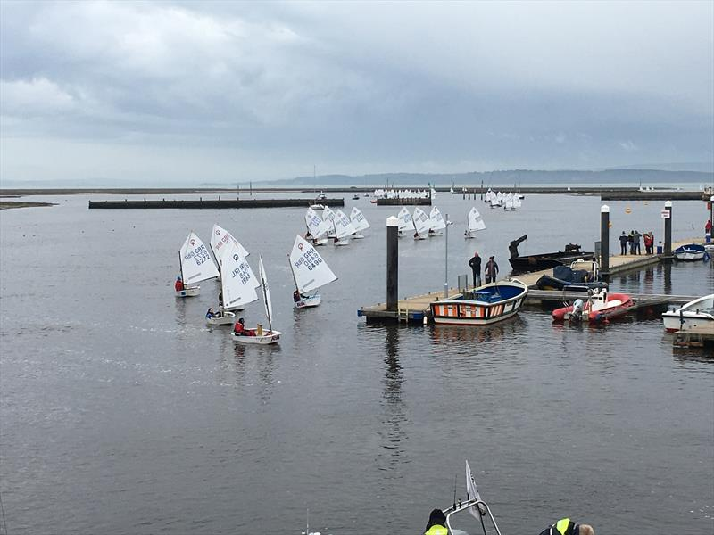 Volvo Gill Optimist Spring Championship in Lymington - photo © David Davies